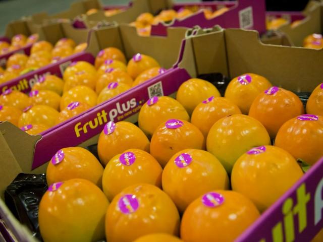 Sharrocks Fruit Image
