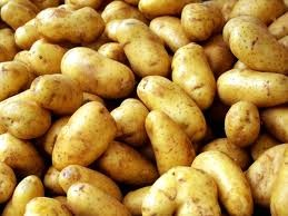 Potato Cyprus image