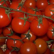 Tomato Cherry on the Vine image