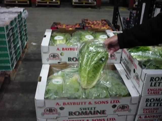Pre-Packed lettuce