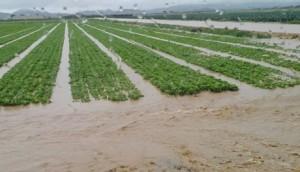 heavy rain in spain